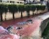 النهر الأحمر يثير عاصفة من الجدل في لبنان