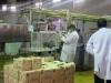 المسعودي: شركة استثمار ألبان ابو غريب فاقدة للأهلية ومخالفات كثيرة بالجامعة الامريكية