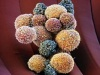 اكتشاف مادة تمنع انتشار السرطان