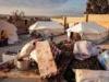 سوريا.. الأفاعي والعقارب تهاجم مخيمات النازحين