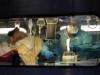 """دراسة موسعة تحدد """"العارض الصحي الأبرز"""" للإصابة بفيروس كورونا"""