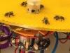 روبوت ينجح في نقل إشارات بين النحل والأسماك