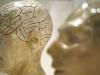 أطباء أعصاب يحددون أسهل طريقة للتعلم والحفظ