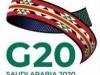إشادة عربية بنتائج أعمال قمة دول مجموعة العشرين